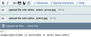 How it works/Images upload & gallery/Upload file wiki editor multiple.jpg